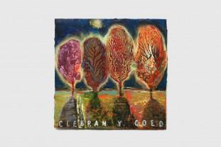 Clebran y coed Gallery